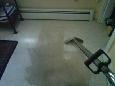 Amerigreen Carpet Cleaning