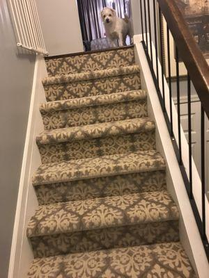 Flooring & Carpet Warehouse