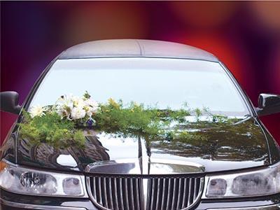 Arrive in Style Luxury Limousine