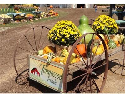 Keller's Corny Country