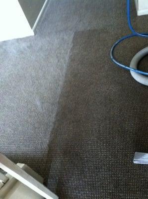 Magic Carpet Cleaners