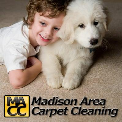Madison Area Carpet Cleaning