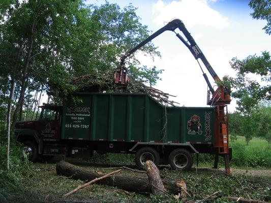 Woodchuck Tree Service, Tree Removal and Pruning