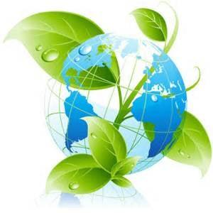Organic Cleaning Solutions