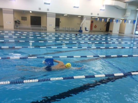 Priscilla Weston Swimming