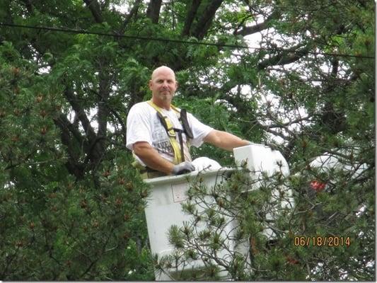 Timbermen Tree Service