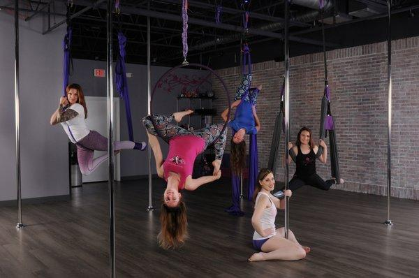 Tiger Lily Vertical Fitness and Dance