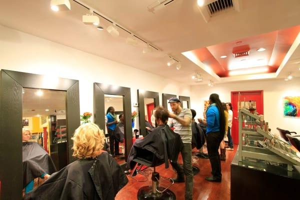 XEX Hair Gallery
