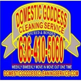 Domestic Goddess Cleaning Service