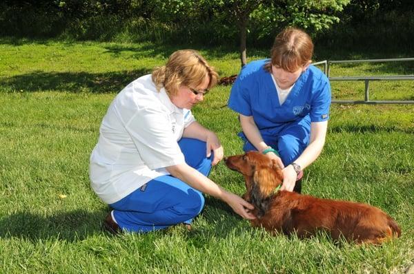 Belton Animal Clinic & Exotic Care Center