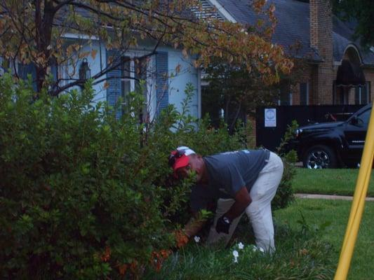 Colonial Lawn Care and Landscape Services