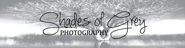 Shades of Grey Photography