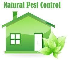 Nature's Own Pest Control