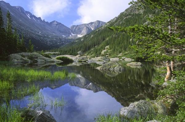 Colorado Green