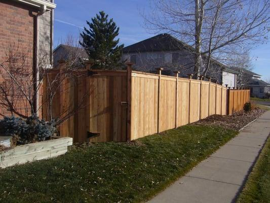 Altitude Fence and Deck