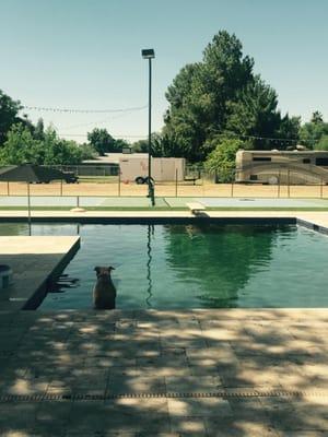 Pathfinder Pools