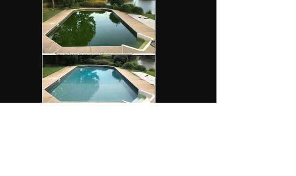 Blue Phoenix Pools