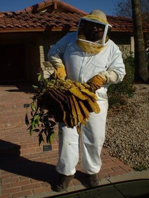 Valleypro Pest Control