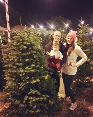Sonshine Christmas Trees