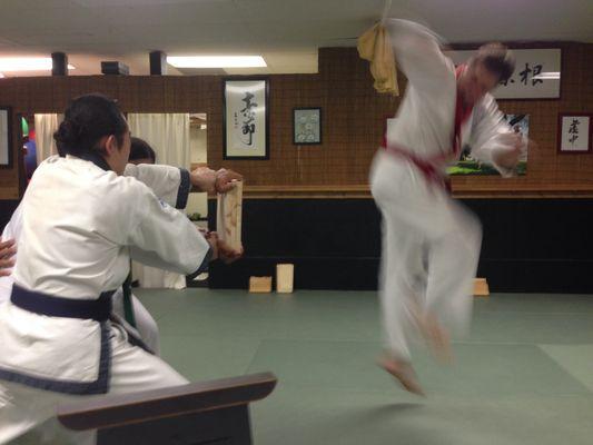 Edelweiss Korean Karate