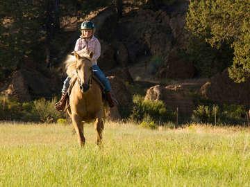 Splendor Farms - Leisure Offers / Activities