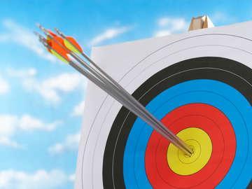 1st Choice Archery