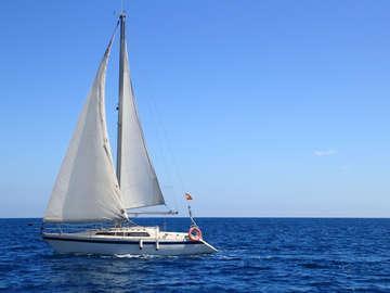 South Coast Sailing Adventures