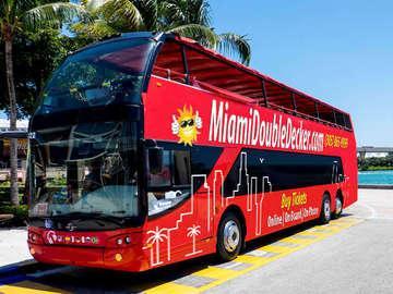 Miami Double Decker