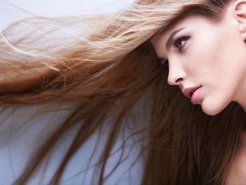 Shampoo Hair Salon and Spa