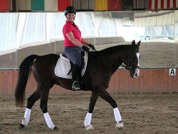 CBY Equestrian Academy