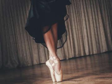 York Ballet LLC