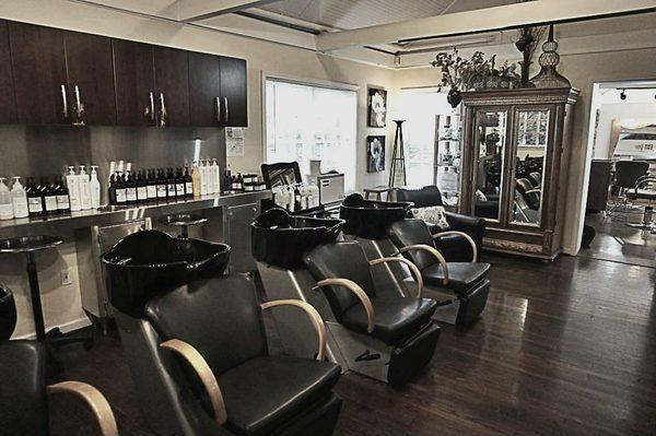 William David Salon