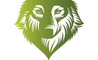 Wolf and Sons Lawn and Landscaping Service LLC