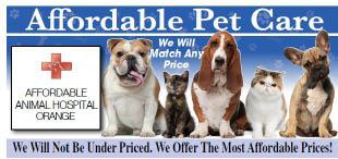 Affordable Animal Clinic - Compton