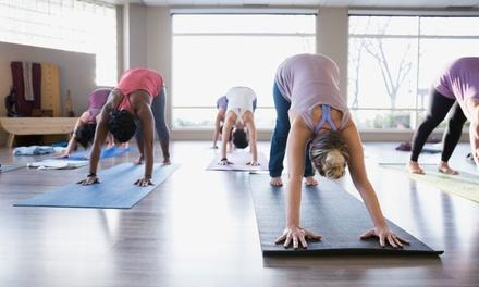 Elevation Yoga and Wellness