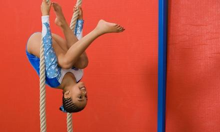 Eagle Ridge Gymnastics