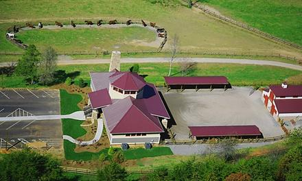 The Stables at Brasstown Valley Resort & Spa