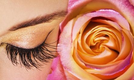Bloom Beauty