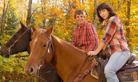 True Heart Equine Enrichment