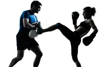 Kickboxing Mount Pleasant