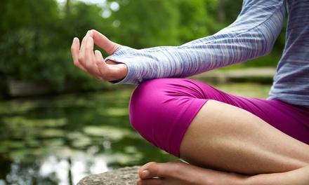 Nina's Yoga & Wellness Center