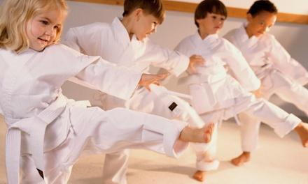 The Oriental Martial Arts College