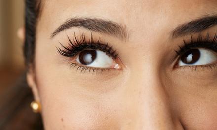 Hollywood Beauty Eyebrow Threading