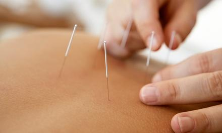 Troy Acupuncture Center