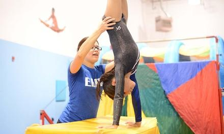 Gymnastics Elite West