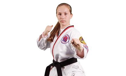 Brices ATA Martial Arts
