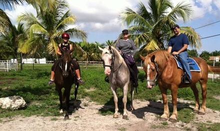 Happy Pony World