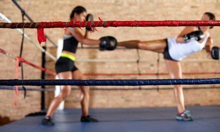 Fitness Kickboxing Florida