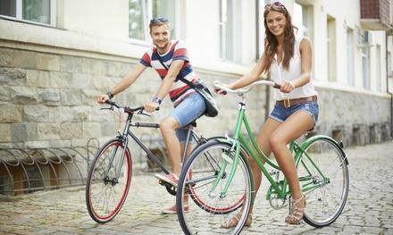Pine Island Bicycles Inc.