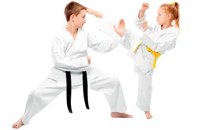 Tiger's Kung Fu Academy
